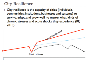 Resilience Index 3